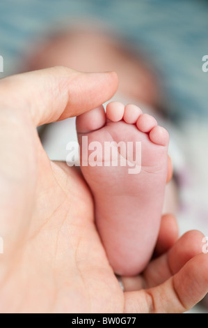 Father holding foot of baby girl - Stock Photo