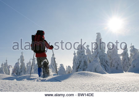 Man with snowshoes in Harz National Park, Lower Saxony, Germany, Europe - Stock Photo