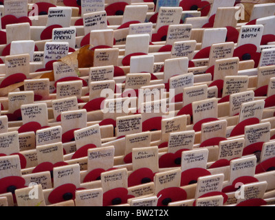 Remembrance crosses laid in the grounds of Westminster Abbey in 2010 - Stock Photo