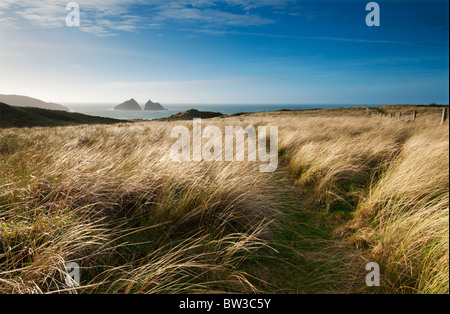 Late afternoon view towards Holywell Bay and Carter's or Gull Rocks in the distance - Stock Photo