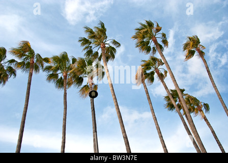 Cannes, on the Cote d'Azure, France - Stock Photo