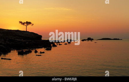 A beautiful Mediterranean sea sunrise with alone pine in the foreground - Stock Photo