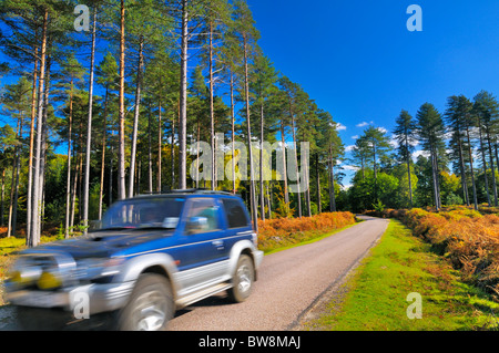 Vehicle passing through a scenic country road in the heart of the New Forest, Hampshire, UK - Stock Photo
