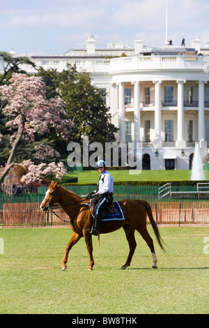 The White House Washington DC. Two Secret Service men on the roof. A Park Police Mounted Officer patrolling the - Stock Photo