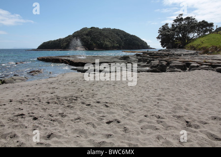 Goat Island Bay north of Auckland New Zealand - Stock Photo