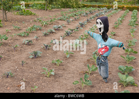 A scarecrow in the vegetable gardens at Redisham Hall open gardens in Redisham , Suffolk , England , Great Britain - Stock Photo