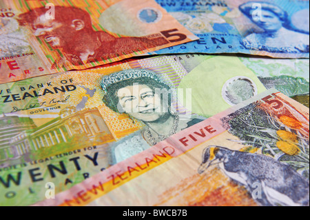 New Zealand money notes NZ Dollar bills - Stock Photo