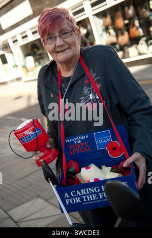 A woman selling red poppies for Remembrance Day, UK - Stock Photo