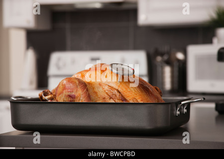 USA, Illinois, Metamora, Turkey in baking tray - Stock Photo