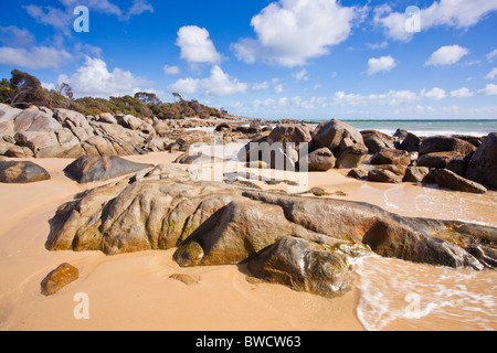 Red lichen covered granite rocks on Bridport beach in Northern Tasmania - Stock Photo