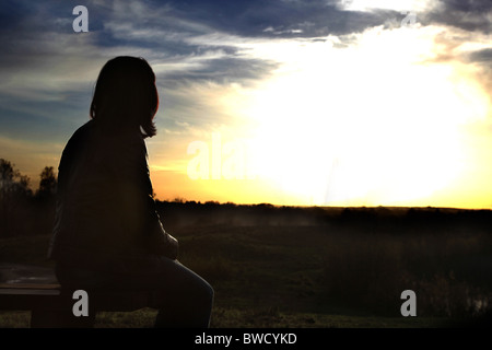 Back view of a woman sitting looking towards a sunset - Stock Photo