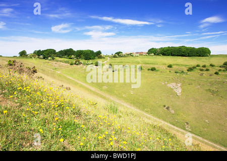 Devil's Dyke; West Sussex; England, Great Britain - Stock Photo