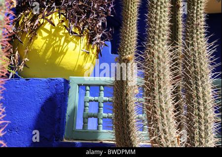 Majorelle Botanical Gardens in Marrakesh Morocco - Stock Photo