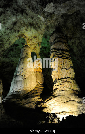 Lions Tail Area of Carlsbad Caverns National Park - Stock Photo