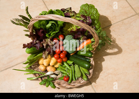 Delicious locally grown freshly picket British spring and summer vegetables in a basket on a tile floor in Weald - Stock Photo