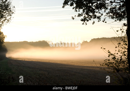 Early morning sun on rising mist in South West of France - Stock Photo