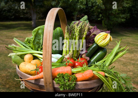 Colourful trug of locally grown freshly picked summer vegetables in country garden with trees in the Weald of Kent - Stock Photo