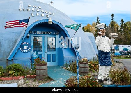 Wild Blueberry Land, Maine, USA - Stock Photo
