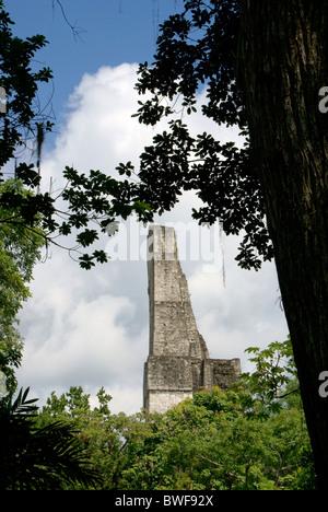 Temple IV framed by trees, Maya ruins of Tikal, El Peten, Guatemala. Tikal is a UNESCO World Heritage Site. - Stock Photo