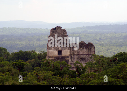 Temple I and Temple II from the top of Temple IV, Tikal, El Peten, Guatemala. Tikal is a UNESCO World Heritage Site. - Stock Photo
