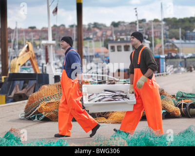 Fishermen with box of fish on harbour - Stock Photo