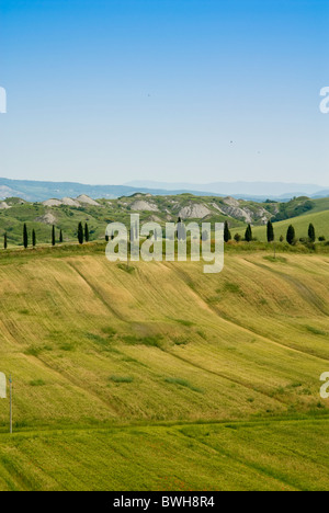 Crete senesi area, near Asciano, Siena Province, Siena, Tuscany, Italy, Europe - Stock Photo