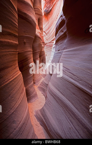 Zebra Slot Canyon, Hole in the Rock Road, Grand Staircase-Escalante National Monument, Utah, USA - Stock Photo
