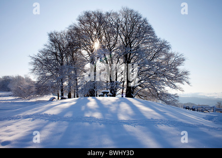 Sun behind trees in a snowy landscape above Broadway in the Cotswolds - Stock Photo