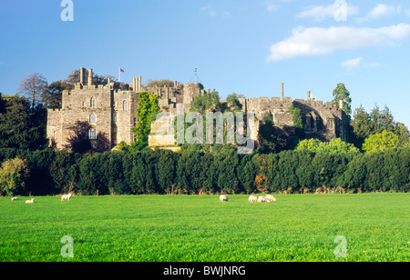 Berkeley Castle in county of Gloucestershire, England. Built to defend the Severn Estuary and Welsh border. Dates - Stock Photo
