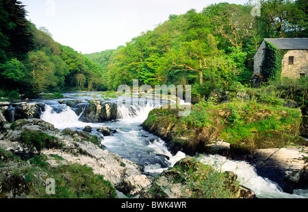 Old watermill at the salmon leap of Cenarth Falls on the River Teifi in Ceredigion, west Wales, United Kingdom - Stock Photo