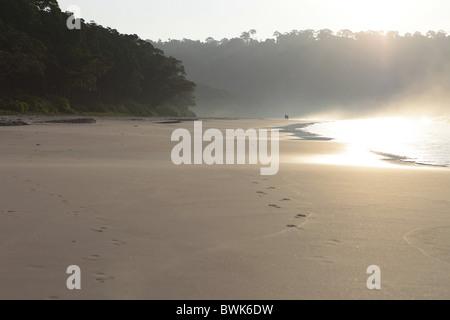 Couple walking along Radha Nagar Beach at sunrise, Beach 7, Havelock Island, Andamans, India - Stock Photo