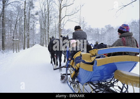 People in horse drawn sleigh in snow covered forest, Saxony, Germany, Europe - Stock Photo