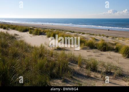 Looking across the sand dunes at Noordwijk on Sea towards the North Sea.  Dutch coast. - Stock Photo