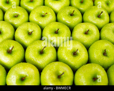 large group of green apples in a row. Horizontal shape - Stock Photo