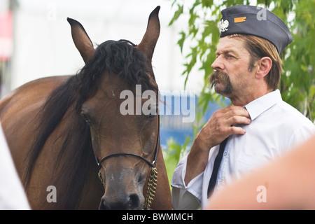 Portrait of gray Arabian horse champion and rider- show Janow Podlaski August 2010 POLAND - Stock Photo