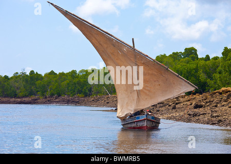 Dhow sailing in a channel off of Lamu Island, Kenya - Stock Photo