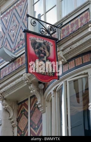Yorkshire Terrier public house - Stock Photo