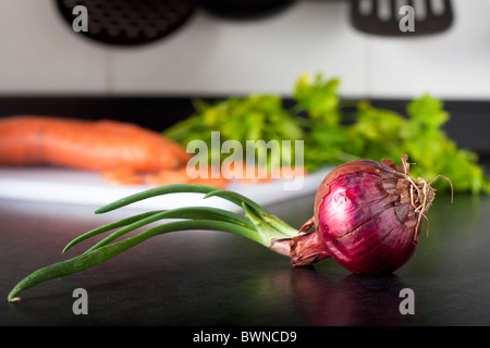 Red Onion in a Kitchen - Stock Photo