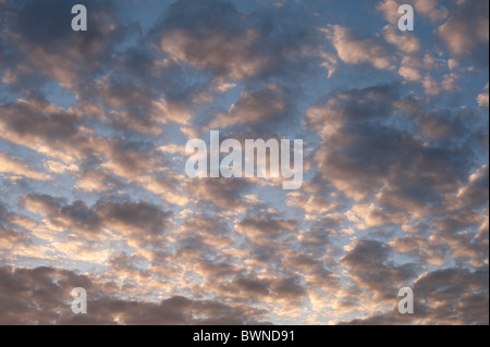 Altocumulus clouds at sunset - Stock Photo