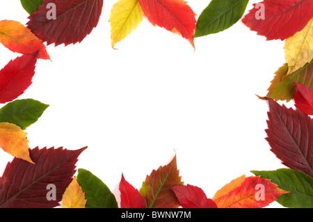 Colorful Autumn Frame - Stock Photo