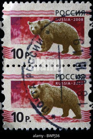 RUSSIA - CIRCA 2008: A stamp printed in Russia shows Brown bear - Ursus arctos, circa 2008 - Stock Photo