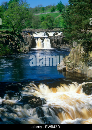 A summer view of Low Force Waterfall and River Tees in Teesdale, County Durham - Stock Photo