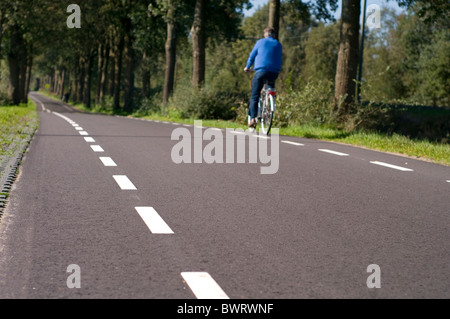 A cyclist on a tree-lined country road in the Netherlands - Stock Photo