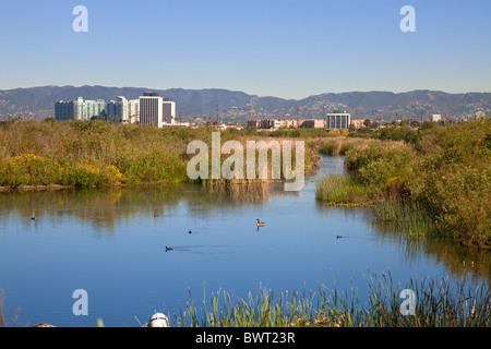 The Ballona Wetlands is a protected area near Marina Del Rey and Playa Del Rey.  Los Angeles, California, USA - Stock Photo