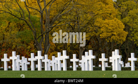 White memorials stand under the trees as they turn gold in the Autumn at Madingley American Cemetery - Stock Photo