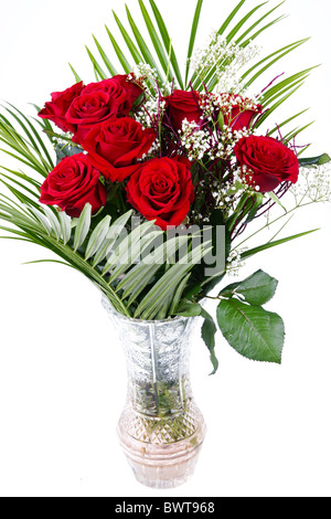Bouquet of red fresh roses in crystal vase on white background - Stock Photo