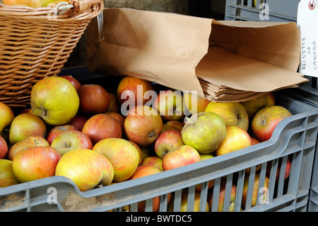 Cox apples with brown paper bags for sale in crate - Stock Photo