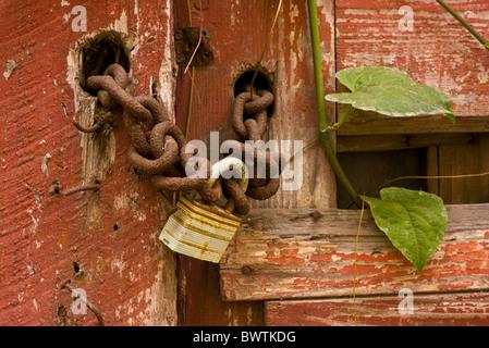 PANAMA CITY, PANAMA - Chain and lock on wooden door - Stock Photo