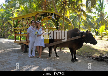 Newlyweds in front of a decorated oxcart in La Digue, Seychelles - Stock Photo