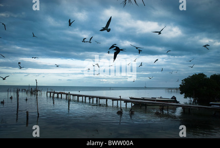 seagulls silhouetted above an ocean dock against a blue stormy sky - Stock Photo